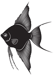 fishicon2.png